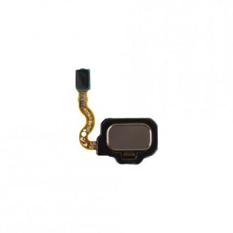 Samsung Galaxy S8 Samsung Galaxy S8 Fingerprint Sensor GoldHaupt-Kamera Klebestreifen