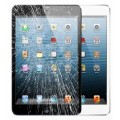Ipad Mini 4  Display Reparatur Glas Austausch Ohne Datenverlust