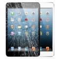 Ipad Mini 3 Display Reparatur Glas Austausch Ohne Datenverlust