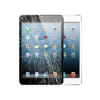 Ipad Mini Disaplay Reparatur Glas Austausch Ohne Datenverlust